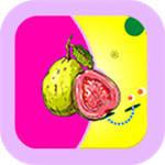 丝瓜草莓芭乐向日葵千层浪视频